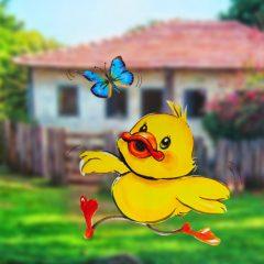 Como hacer un pollito ilustrado