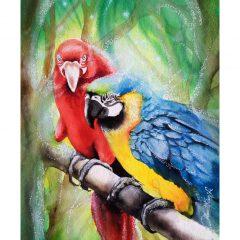 Ilustracion Papagayos